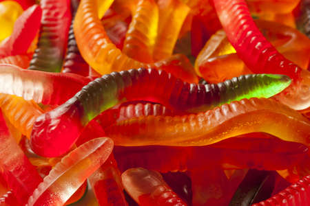 worm snake: Colorful Fruity Gummy Worm Candy on a background