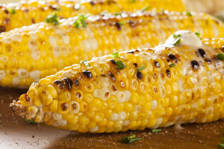 corn on the cob: Organic Grilled Corn on the Cob Ready to Eat Stock Photo