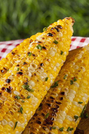 sweetcorn: Organic Grilled Corn on the Cob Ready to Eat Stock Photo