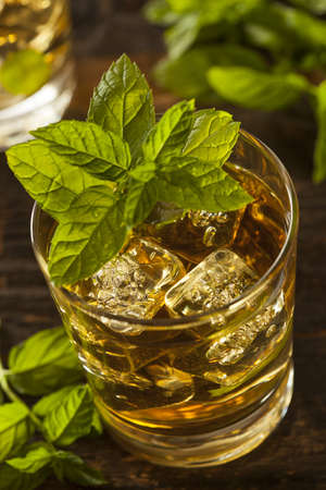 Homemade Gourmet Fresh Mint Julep Alcoholic Cocktail Reklamní fotografie