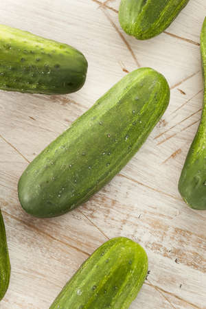 PICKLES: Verde orgánico salmuera Pepinos usados ??para decapado Foto de archivo