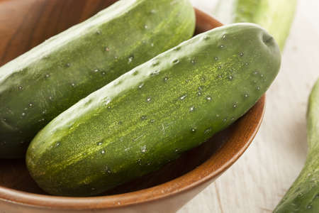 Organic Green Pickle Cucumbers used for Pickling