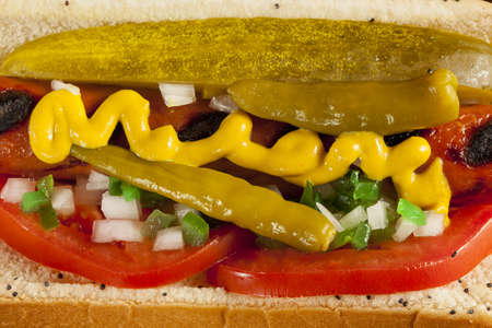 Chicago Style Hot Dog with Mustard, Pickle, Tomato, Relish and Onion photo