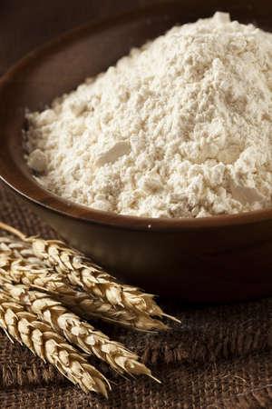 baking ingredients: Organic Whole Wheat Flour Ready For Baking