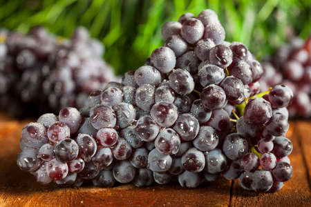 Organic Purple Wine Grapes on a Background