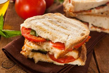 Homemade Tomato and Mozzarella Panini with Basil photo