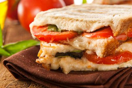 Zelfgemaakte tomaat en mozzarella Panini met basilicum