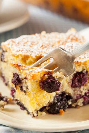 Homemade Blueberrry Coffee Cake with Powdered Sugar