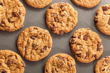 chocolate chip cookies: Homemade Chocolate Chip Cookies Ready to Eat