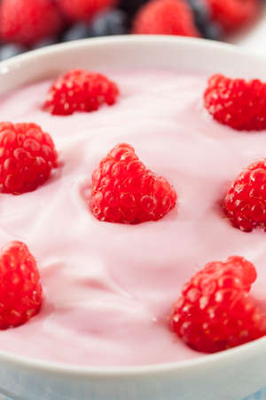 Fresh Organic Healthy Yogurt with Ripe Raspberries