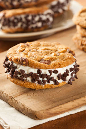 ice cream bar: Homemade Chocolate Chip Cookie Ice Cream Sandiwch