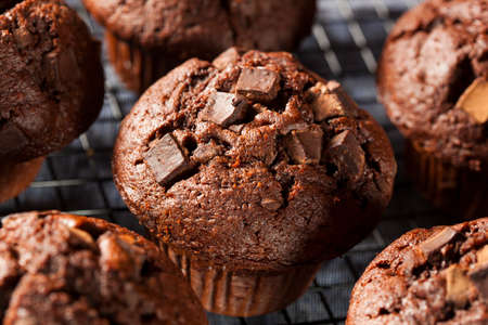Double Chocolate Chip Muffin Pastry for Breakfast