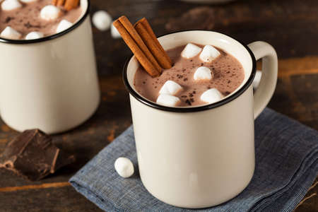 Gourmet Hot Chocolate Milk with Cinnamon and Marshmallows Zdjęcie Seryjne - 24513157