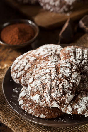 crinkle: Homemade Chocolate Crinkle Cookies with Powdered Sugar