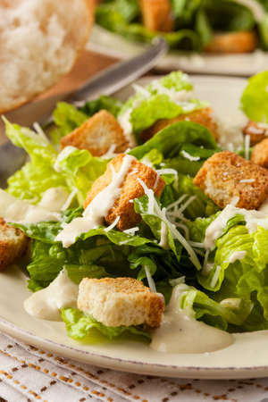 salad dressing: Healthy Green Organic Caesar Salad with Cheese and Croutons