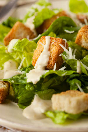 caesar salad: Healthy Green Organic Caesar Salad with Cheese and Croutons