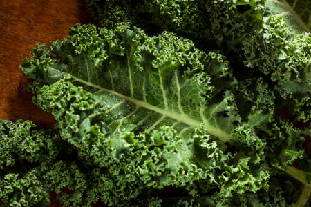 Bunch of Healthy Raw Green Kale Leafy Vegetables