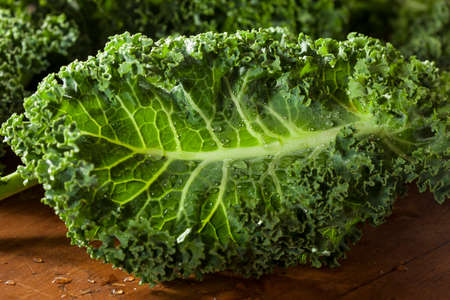 kale: Bunch of Healthy Raw Green Kale Leafy Vegetables