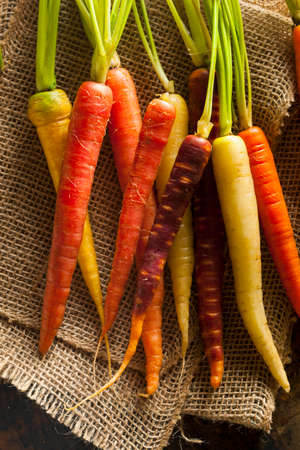 Colorful Multi Colored Raw Carrots