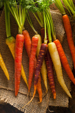 multi coloured: Colorful Multi Colored Raw Carrots  Stock Photo