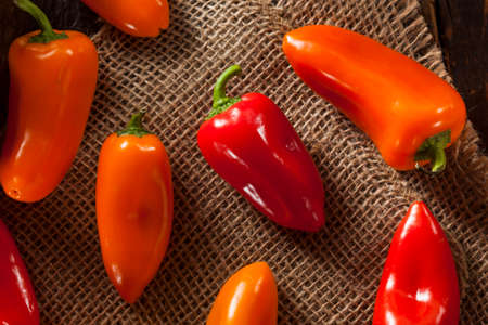 Group of Organic Colorful Hot Peppers on a Background