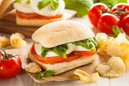 Organic Homemade Caprese Sandwich with Tomato, Mozzarella and Basil