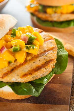 Mahi Fish Sandwich with Salsa and Lettuce photo