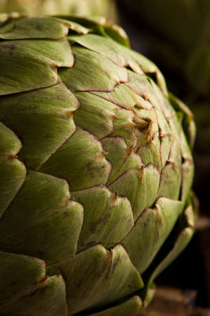 Raw Organic Green Artichokes on a Background photo
