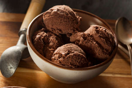 Homemade Dark Chocolate Ice Cream in a Bowl