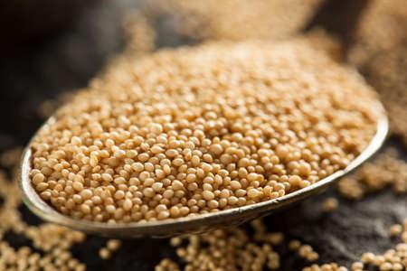 Raw Organic Amaranth Grain in a Bowl photo