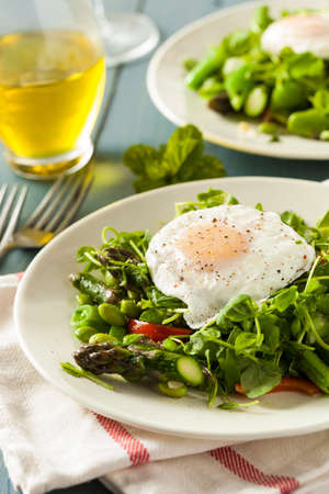 Healthy Scafata with a Poached Egg and Asparagus photo