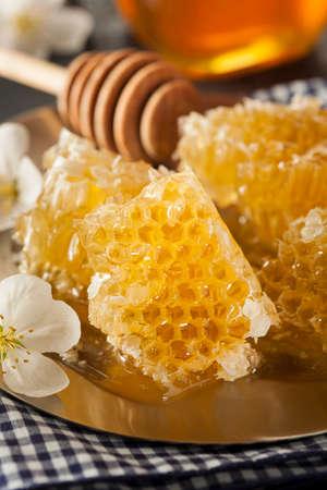honey comb: Organic Raw Golden Honey Comb on a Background