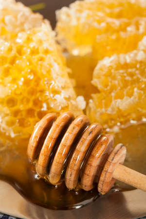 honey comb: Organic Raw Golden Honey Comb on a Background