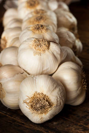 Organic Raw White Garlic on a Background photo