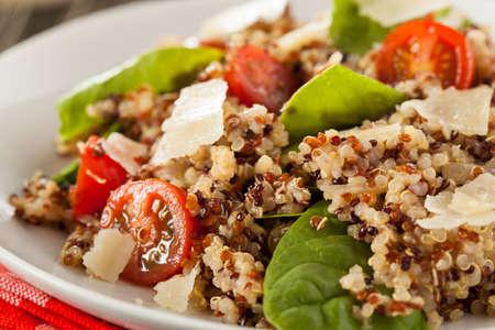 健康的なベジタリアンのキノアのサラダ トマトとほうれん草 写真素材