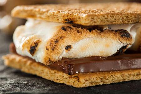 S'mores maison avec des guimauves au chocolat et biscuits Graham Banque d'images - 29289480