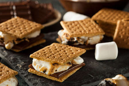 graham: Homemade Smores with Marshmallows Chocolate and Graham Crackers
