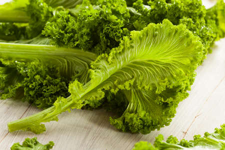 Organic Raw Mustard Greens on a Background
