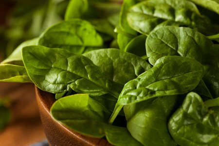 'baby spinach': Raw Green Organic Baby Spinach in a Bowl