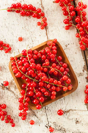 Organic Raw Red Currants on a Background