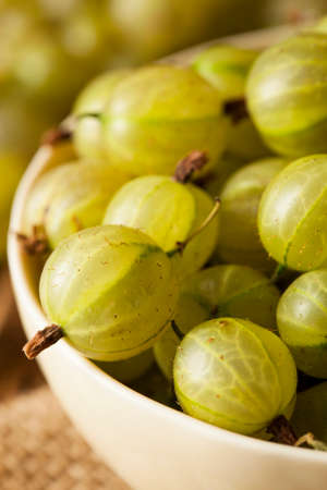 Organic Raw Green Gooseberries on a Background