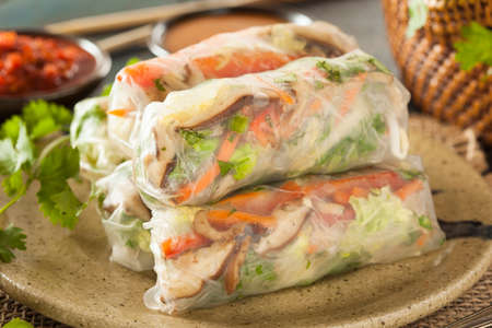 Healthy Vegetarian Spring Rolls with Cilantro Carrots and Cabbage Zdjęcie Seryjne