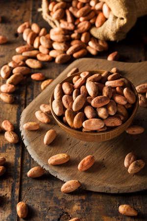 cocoa bean: Raw Organic Cocoa Beans in a Bowl