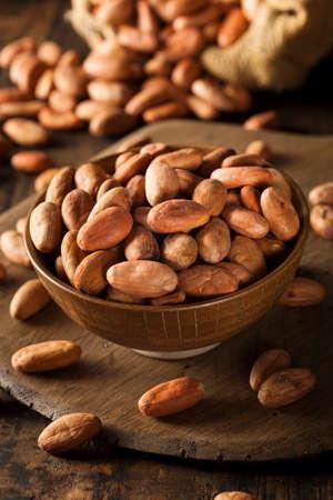 cacao beans: Frijoles Raw Organic Cocoa en un taz�n de fuente