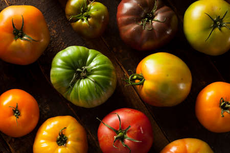 heirloom: Colorful Organic Heirloom Tomatoes Fresh from the Garden