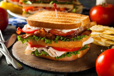turkey bacon: Turchia e pancetta club sandwich con lattuga e pomodoro