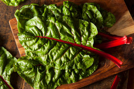 salad greens: Raw Organic Red Swiss Chard on a Background