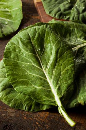 salad greens: Raw Organic Green Collard Greens on a Background