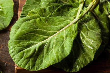 ensalada verde: Raw Organic Green Collard verdes sobre un fondo