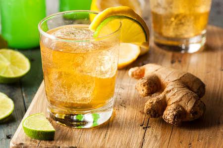 vaso de agua: Org�nica Ginger Ale sodio en un vaso con lim�n y lima Foto de archivo